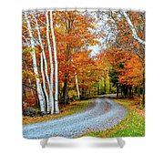 Stone Autumn Road Shower Curtain