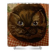 Stone Cats  Shower Curtain