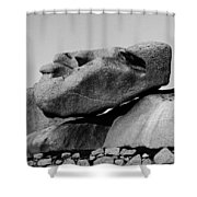 Stoneface Shower Curtain