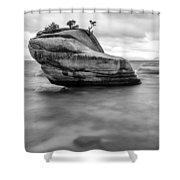 Stormy Bonsai Rock Shower Curtain