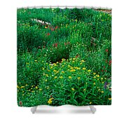 Stream And Alpine Flowers, Ouray Shower Curtain