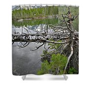 String Lake Reflection Shower Curtain