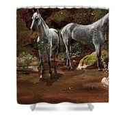 Study Of Wild Horses Shower Curtain