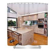 Stylish Modern Kitchen Shower Curtain