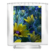 Sun Glory Series Shower Curtain