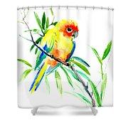 Sun Parakeet Shower Curtain