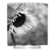 Sunflower Garden Shower Curtain