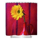 Sunflower In Red Pitcher Shower Curtain