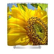 Sunflowers Art Prints Sun Flower Giclee Prints Baslee Troutman Shower Curtain