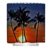 Sunlit Palms Shower Curtain