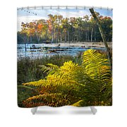 Sunrise In The Swamp Shower Curtain