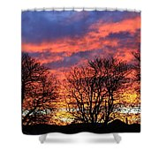 Sunset And Filigree Shower Curtain