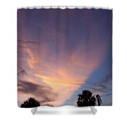 Sunset At Pine Tree Shower Curtain