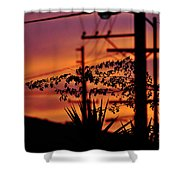 Sunset Sihouettes Shower Curtain