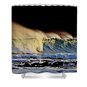 Surfing The Island #2 Shower Curtain