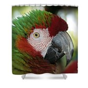 Surprised By Joy Shower Curtain