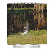 Swamp Bird Shower Curtain