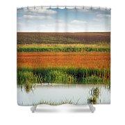 Swamp With Birds Landscape Autumn Season Shower Curtain