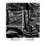 Swan Creek Footbridge Shower Curtain