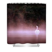 Swan In The Mist Shower Curtain