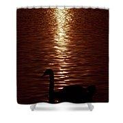 Swan Silhouette Shower Curtain