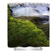 Sweet Creek Oregon 11 Shower Curtain