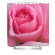 Sweet Rosiness Shower Curtain
