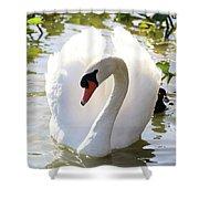 Sweet Swan 2 Shower Curtain