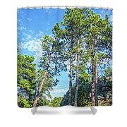Tall Pine Trees Shower Curtain