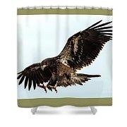 Talons First Shower Curtain