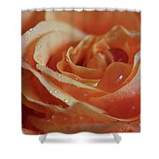 Tangy Shower Curtain by Tracy Hall