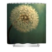 Teal Dandelion Shower Curtain