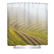 Terrace Fields Scenery In Autumn Shower Curtain