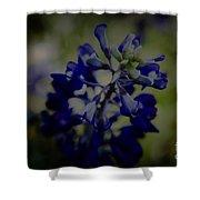 Texas Bluebonnet Shower Curtain