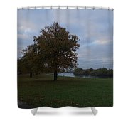 That Tree, 26th October, 2015 Shower Curtain