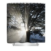 The Abode Of Gladness Shower Curtain