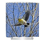 The American Goldfinch In-flight, Shower Curtain