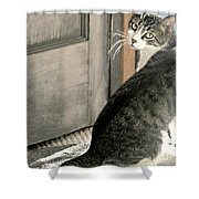 The Back Door Shower Curtain