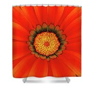 The Beauty Of Orange Shower Curtain