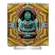 The  Buddhas Of Ayahrtyan  Shower Curtain