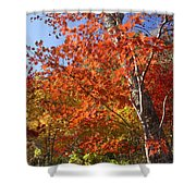 The Colors Of Autumn Shower Curtain