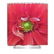 The Dahlia Shower Curtain