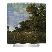 The Edge Of The Woods At Monts-girard, Fontainebleau Forest Shower Curtain