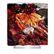 The End Of Fall Shower Curtain