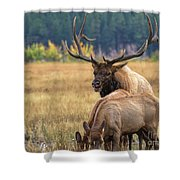 The Enforcer Shower Curtain