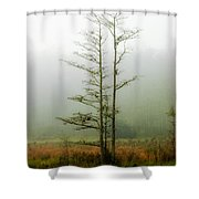 The Foggy Dew Shower Curtain
