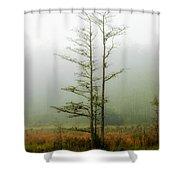 The Foggy Dew Shower Curtain