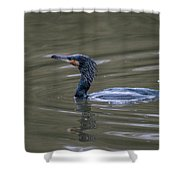 The Great Cormorant Shower Curtain