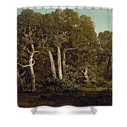 The Great Oaks Of Old Bas-breau Shower Curtain