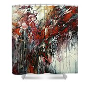 The Heart Of Chaos Shower Curtain